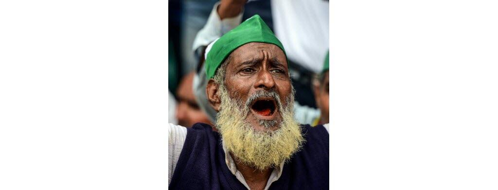 Inde : la colère des cueilleurs de thé
