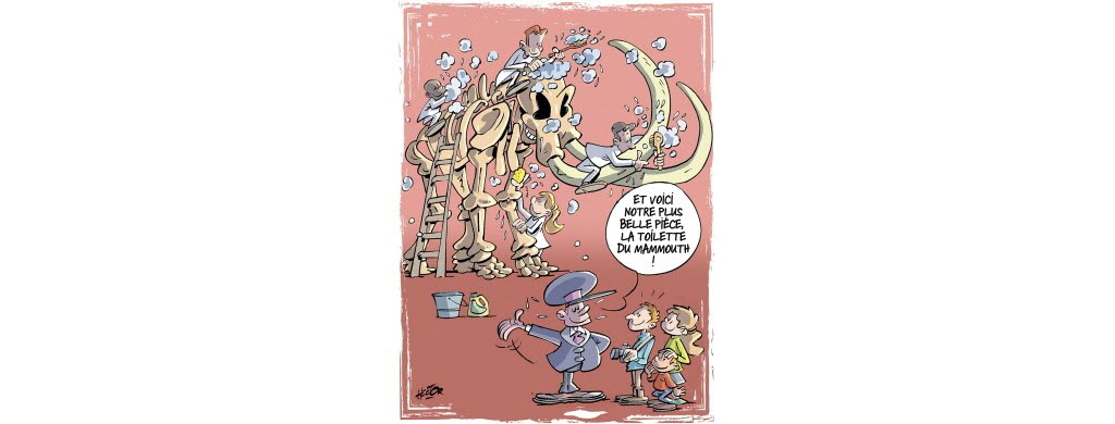 Des soins pour le mammouth