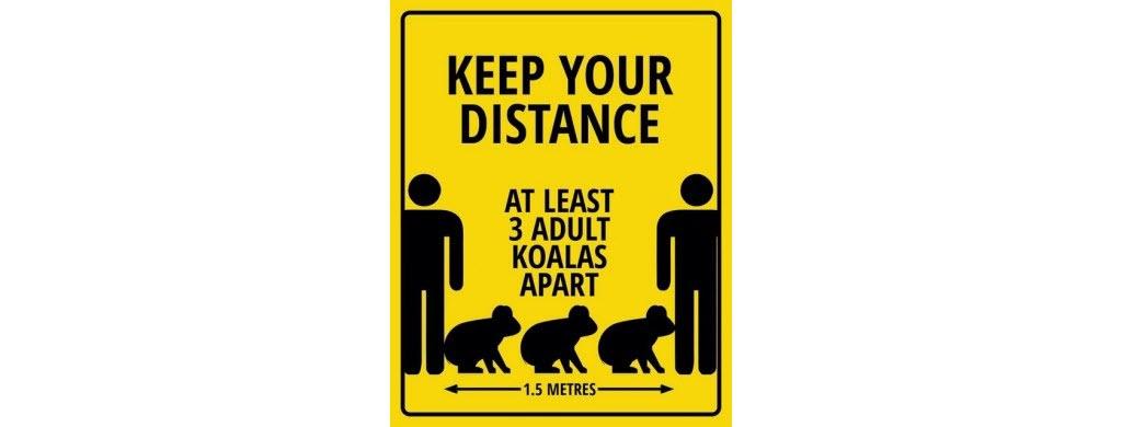 En Australie, 2 m = 3 koalas