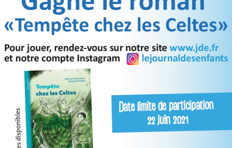"""Gagne le roman """"Tempête chez les Celtes"""""""