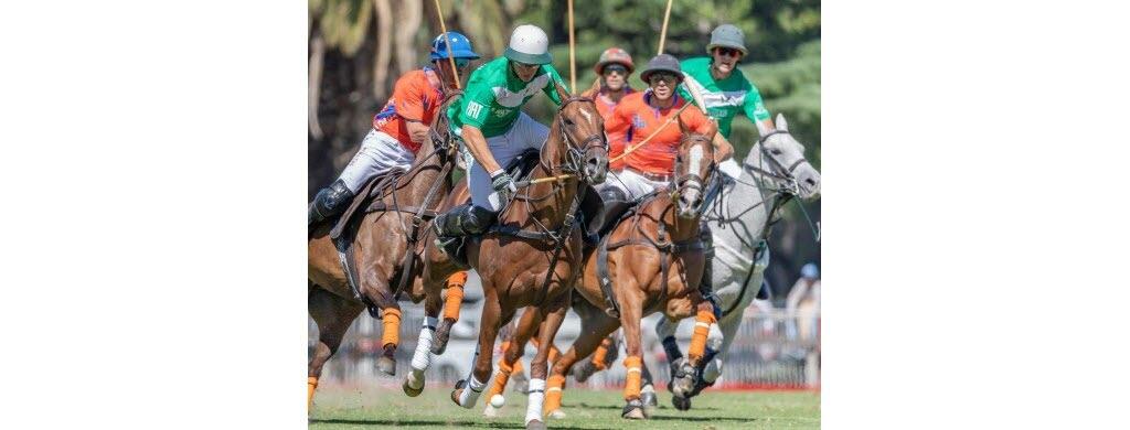 Equitation : des poloïstes reconnus