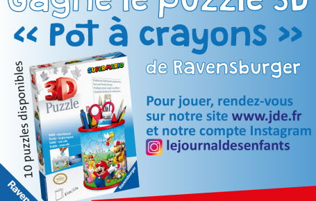 "Les gagnants du jeu puzzle 3D ""Pot à crayons Supermario"""