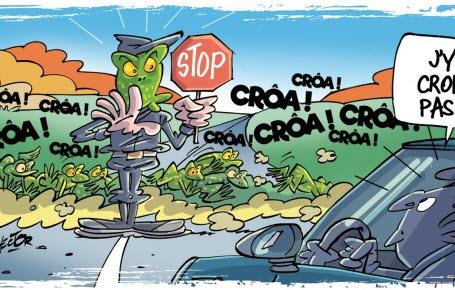 Laissez passer les grenouilles!