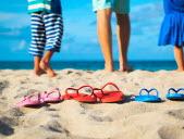 Un été à savourer le JDE