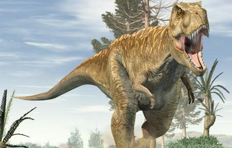 Le T. rex, pas si rapide que ça!