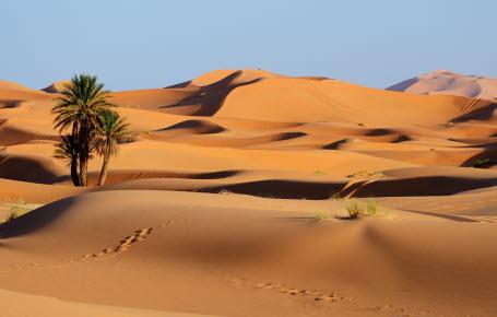 Pourquoi les déserts existent-ils ?