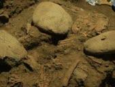 Les secrets d'une ado d'il y a 7000 ans